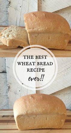 I love this wheat bread recipe. It is the best wheat bread recipe ever! I love this wheat bread recipe. It is the best wheat bread recipe ever! Best Wheat Bread Recipe, Bread Machine Wheat Bread Recipe, Honey Wheat Bread, Bread Recipes, White Whole Wheat Bread Recipe, White Wheat Bread, Bread Machine Recipes Healthy, Yeast Bread, Pastry Recipes