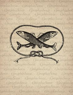 Two FIsh in a Rope Circle Mariner's Logo Knot by GraphicSense, $1.00 Aqua Logo, Logos Vintage, Tinta China, Two Fish, Vintage Romance, Vintage Fishing, Collage Sheet, Digital Collage, French Vintage