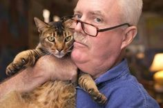 therapy cat - Google Search
