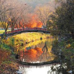 Over the creek ~ Peoria, Illinois