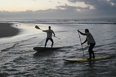 SUP at the Zandvlei estuary mouth - False Bay - Cape Town Property Investor, Coastal Homes, Cape Town, Surfing, Africa, Ocean, Lifestyle, City, Beach