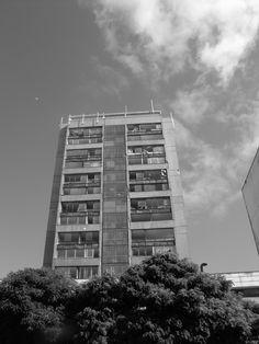 Concepción. 2010
