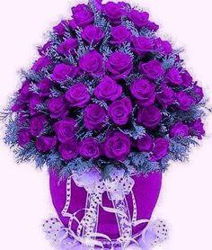 I love everything purple