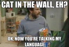 20 'It's Always Sunny in Philadelphia' Quotes We Should Use Every Day
