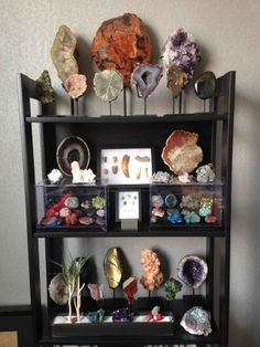 Collection of geological and natural curiosities Crystal Collection Display, Rock Collection, Cabinet Of Curiosities, Natural Curiosities, Cabinet Decor, Curio Decor, Curiosity Cabinet, Crystal Room, Rock Decor