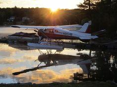 Greenville Maine morning dhc-2 beaver Greenville Maine, Bush Pilot, Bush Plane, Float Plane, Walk The Earth, Beavers, Amphibians, Fly Fishing, Airplanes