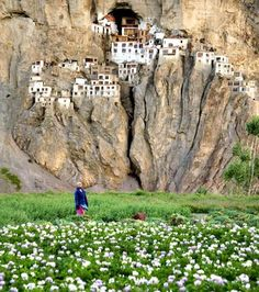Phuktal Monastery During Monsoon Season, India