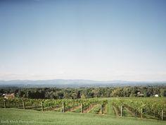 Fine Art Film | Tuscan Vineyard Wedding | Magnolia Rouge | Emily March Photography