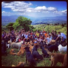 Territorio de Zaguates 12 / 01 / 2.014 11:43 a.m. Santa Bárbara de Heredia Costa Rica
