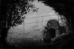 Ladywell In The Mist by Samantha Higgs      The Ladywell in Speen is one of the forgotten holy wells of Britain, it probably dates back to before Roman times and was believed to have healing powers. #pagan #roman #holywell #ancient #healing #britain
