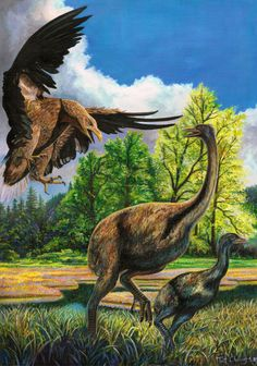 Haast's Eagle is hunting a moa and its baby the mom only has its foot talons to defend itself