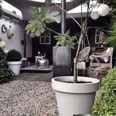 402 vind-ik-leuks, 60 reacties - Marieke Reintjes (@mariekereintjes_) op Instagram: 'Morning,.. Hier zojuist heerlijk de dag met een kopje koffie begonnen.. Dadelijk lekker de voetjes…'