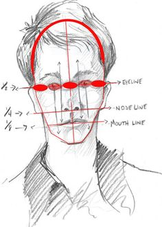 Facial proportions - Five eyes make up the width of a typical human face. - I love this lesson, so easy, even though I can't draw