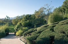 parque dela paloma benalmadena | Parque de La Paloma en Benalmádena- La Paloma Park in Benalmádena ... Costa, Benalmadena, Country Roads, Park, Parks, Places