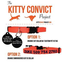 Kitty Convict Cat ID Collars GoTags http://smile.amazon.com/dp/B018IRQ316/ref=cm_sw_r_pi_dp_ErPNwb1RC2CQ4