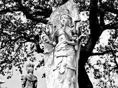 em Bacalhôa Buddha Eden <br /> <br />A paz vem de dentro de você mesmo. Não a procure à sua volta. <br />Buda Buddha, Statue, Toe, Fotografia, Peace, Pictures, Sculptures, Sculpture
