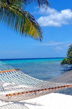Imagina que estás comiendo en esta playa de #Aruba Feliz tarde :)