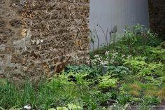 5 Culture Chanel Exhibit, The Garden // The Palais de Tokyo, Paris // Designer: Piet Oudolf // Images: 2013 Adam Woodruff + Associates Chanel, Paris Design, Exhibit, Art Pictures, Garden Landscaping, Perennials, Perennial Plant, Outdoor Structures, Culture