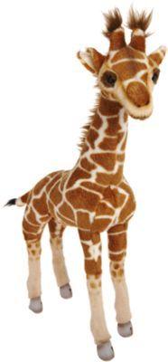 Standing Baby Giraffe