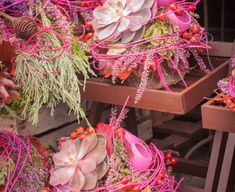 Montages, Plants, Gardening, Fall Season, Autumn, Collages, Lawn And Garden, Plant, Planets