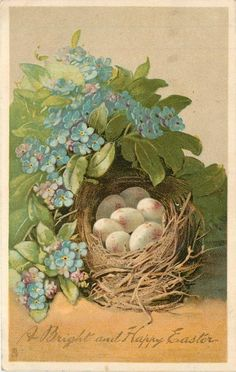A BRIGHT AND HAPPY EASTER forget-me-nots surround bird's nest with eggs Free freebie printable vintage Easter postcard by Raphael Tuck Co.