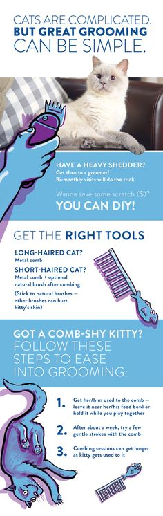 Good info... I have 7 cats. The 3 babies I rescued & socialize love a brush bath (brush dipped in water & shaken out). They love it. My 3 lilac point Siamese cats & 1 chocolate point don't care for that but a ever so slightly damp brushing, I use a Conair boar bristle brush with 3 rows of bristles. They love it & save them up chucking fur/food. Start early in life & you won't have to worry.