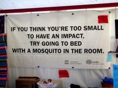 try going to bed with a mosquito in the room