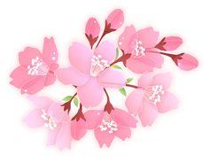 イラスト 桜 - Google 検索