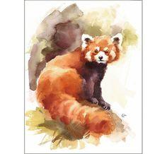Red Panda - Original Watercolor Painting 9x12 inches Animals