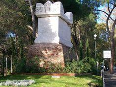 Gever gestione del verde - potature alberi roma