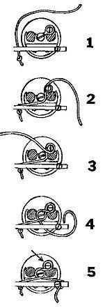 French Horn Stringing