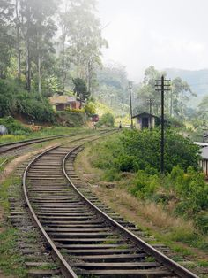 Train trails on our way to Haputale in Sri Lanka. Not only a cheap way to travel but also offering impressive views Im Blue, Ways To Travel, Sri Lanka, Railroad Tracks, Trail, Places, Life, Lugares