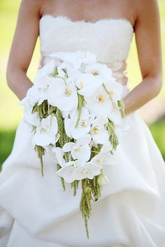 Gorgeous white orchid & green bridal bouquet