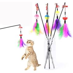 Silian Kitten Play Cat Colorful Feather Interactive Fun Toy Rod Wand *** Read more reviews of the product by visiting the link on the image. (This is an affiliate link) #Cats