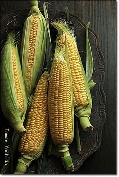 ears of corn. Fruit And Veg, Fruits And Vegetables, Corn Vegetable, Ears Of Corn, Corn Ear, Farm Lifestyle, Vegetables Photography, Fruit Photography, Still Life