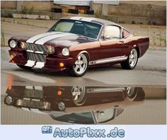 1965 ford mustang fastback GT347