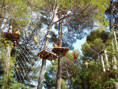 Saltapins - Morella Turismo - Página oficial de Turismo de Morella
