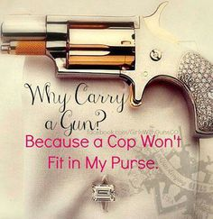Pretty much!! ((And, I don't have a ton of trust for cops after having to deal with a power-hungry, child molesting one!!)) My gun is pretty anyway. ;)
