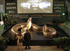Titanoboa: New York's Grand Central Terminal Displays Model Of Biggest Snake Ever (PHOTOS, VIDEO)