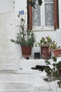 Anafiotika - Ateny - Grecja