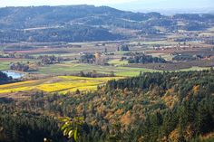 This is what I see on my drive home in the fall. Newberg Oregon, Alis Volat Propriis, Willamette Valley, My Town, Pacific Northwest, North West, Fun Things, Serenity, Destinations