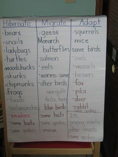 ALuv and I just finished a 2-week unit in our science last week on animals in the winter.  We had fun and both learned quite a bit!  I wanted to share a few resources and ideas of how we integrated literacy into our study.  We focused on the three ways that animals survive in the winter time: hibernation, migration, …