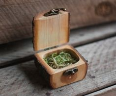 A gift box handmade from tree branches with antiqued brass hinge and latch. All wood is from sustainable sources, mostly residential properties and branches fallen in storms.