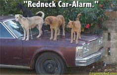 Redneck Car Alarm