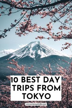 Easy Day Trips From Tokyo | Japan Travel | Tokyo Day Trips | Best Tokyo Day Trips | Japan Itinerary | Tokyo Tours | Japan Things to Do | Japan Places to Visit | Day Trips From Tokyo | Nara | Japan Cherry Blossoms | Tokyo Disney | Snow Monkeys | Tokyo Aesthetic | Things to do in Japan | Places to Visit Near Tokyo | Japan Travel Guide | Tokyo Travel Tips #JapanTravel #TokyoDayTrips #VisitJapan
