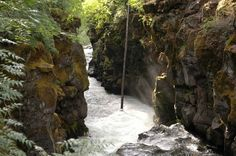 The Rogue River of southwest Oregon flows through many beautiful locations, including the Rogue Gorge near Union Creek in Jackson County, upstream of Grants Pass. The river was among the first protected by the federal Wild and Scenic Rivers Act of 1968. OregonLive.com