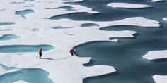 The average American melts 645 square feet of Arctic ice per year - Business Insider