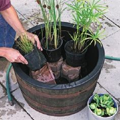 Instant Water Garden. This tip for an instant water garden will completely transform your backyard. | Birds & Blooms