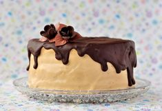 Instant espresso powder turns chocolate ganache into a dangerously decadent mocha topping. Whether you're using it to top a cake or an eclair, this ganache is for real. Mocha Frosting, Icing Frosting, Whiskey Cake, Ganache Recipe, Espresso Powder, Eclairs, Chocolate Ganache, Cake Decorating, Bakery