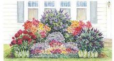 The Fragrant Garden Plan; Designed to fit a well drained area for 12 feet wide and 8 feet deep. It's a wondeful collection of the most fragrant perennial flowers that will grow in full sun or part sun. The plant height varies, bu the tallest are 5 feet high. The bloom time is from late spring through summer. Zones 4-9.